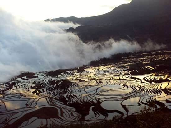 Yunnan, China: terraces