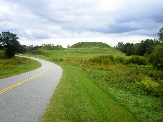 Ocmulgee Mounds National Historical Park: Great Temple Mound.