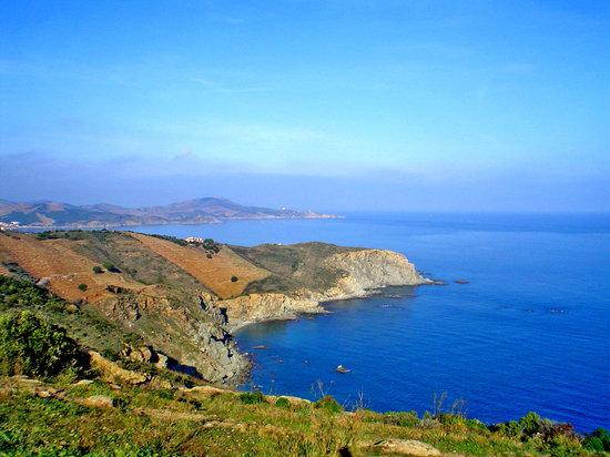 Collioure, Frankrig: Sur de Francia: la Cote Vermeille