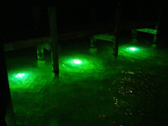 underwater dock lights - picture of bayside grille & sunset bar, Reel Combo