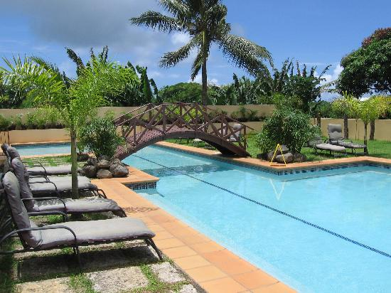 Coconut Palms Resort: big pool