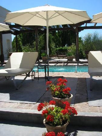 Cavas Wine Lodge : The pool
