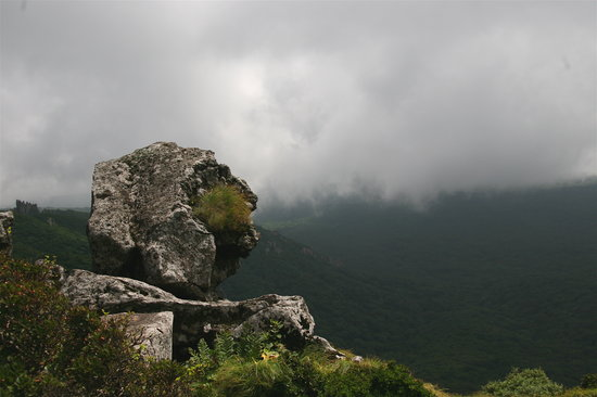 Hallasan National Park: a rock