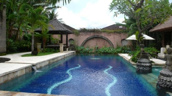Bebek Tepi Sawah Villas & Spa: Another view of the pool
