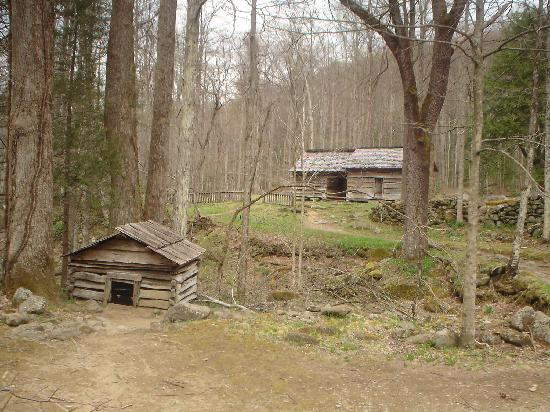 Pull off view picture of roaring fork motor nature trail for Motor trails in gatlinburg tn