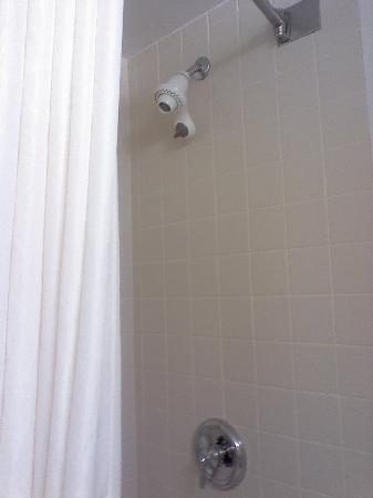 Wingate By Wyndham Flint / Grand Blanc: Wingate Shower