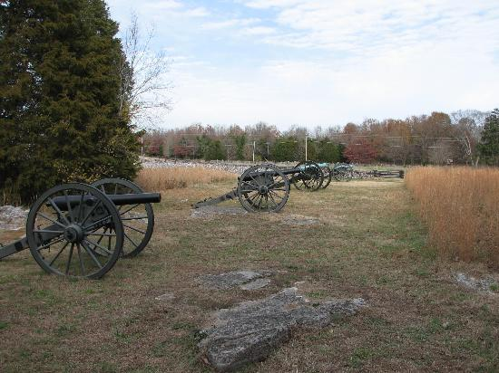 Stones River National Battlefield: Stones River Battlefield from one of the tour stops