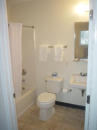 Stay Suites of America : Bathroom - Note no counter space