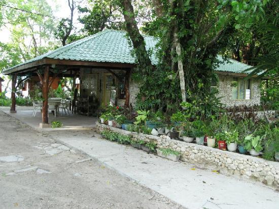 Dolphin Bay Resort & Peleliu Divers : Resort entrance