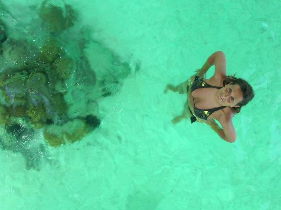 InterContinental Bora Bora Le Moana Resort: dal vetro dell'overwater