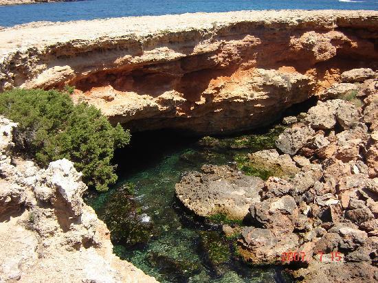 Playa de Cala Bassa: Cala Bassa