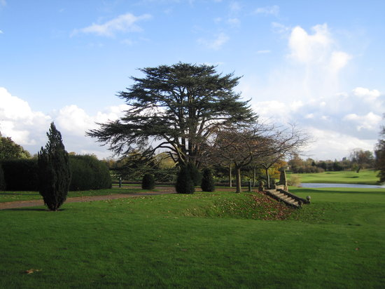 Hanbury Manor Marriott Hotel & Country Club: Garden