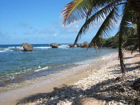 Bath Beach: Bathsheba