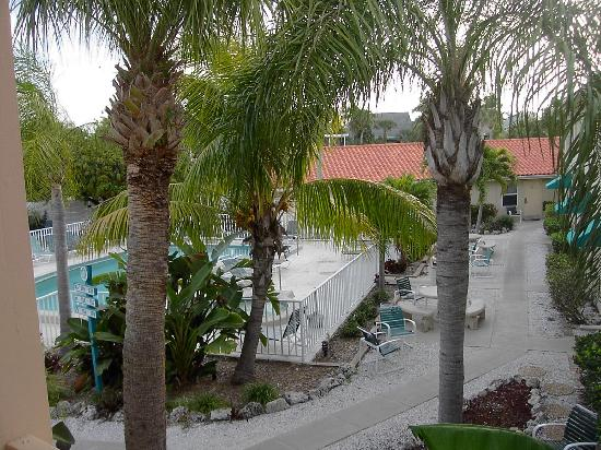 Siesta Beach Resort & Suites: pool area from our porch