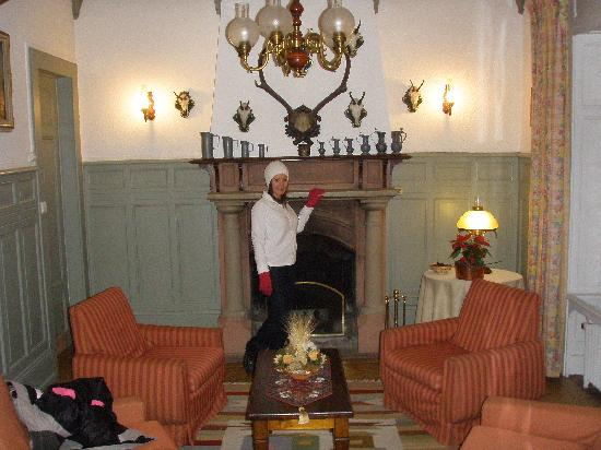 La Savoyarde : Fireplace