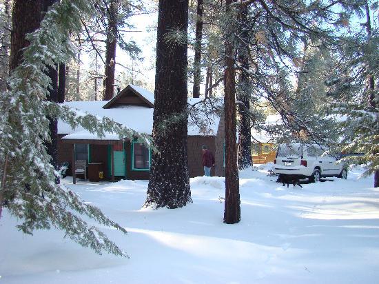 Idyllwild Inn: Cabin #3