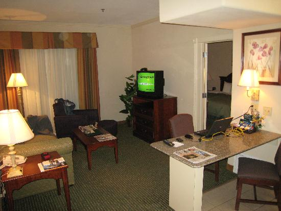 Homewood Suites by Hilton Houston - Woodlands: Living Room