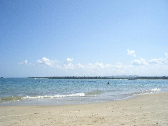 Occidental Caribbean Village Playa Dorada : The beach