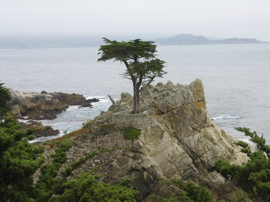 Pebble Beach, Καλιφόρνια: Cypress Point