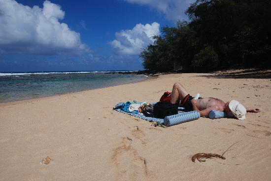 The Palmwood: Enjoying the secluded beach at Moloa'a Bay