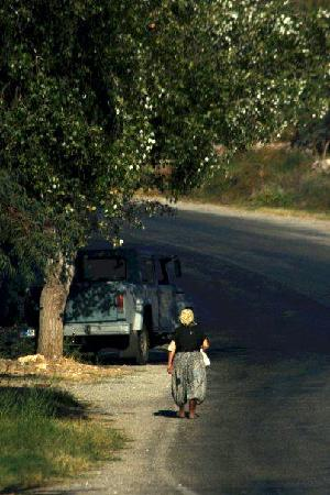 Ortakent, Turki: local