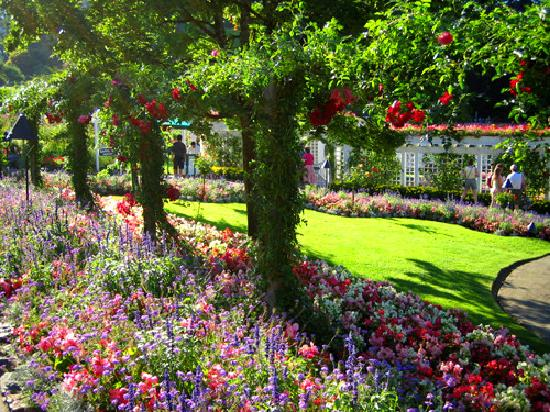 The Water Picture Of Butchart Gardens Central Saanich Tripadvisor