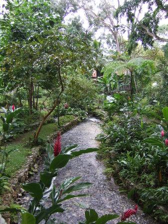 Ocho Rios, Jamaica: Coyaba 2