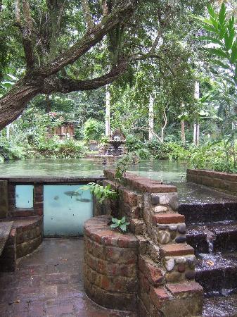 Coyaba River Garden and Museum : Coyaba 3