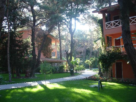 Marti Myra: les bungalows