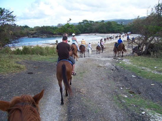Chukka Caribbean Adventures : part of route to the wading beach