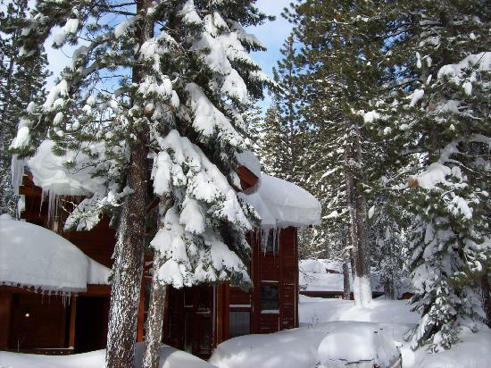 Donner Lake Inn Bed and Breakfast: huge dump of snow