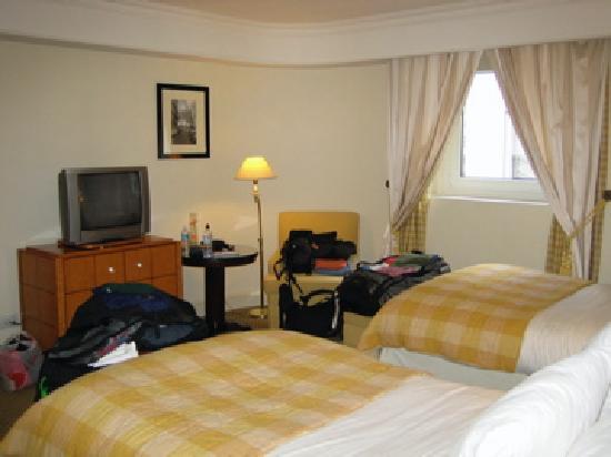 Sofitel Buenos Aires Arroyo: Standard double room