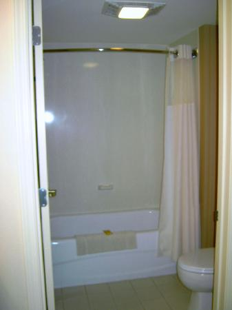 Residence Inn Boston Franklin: Residence Inn    franklin - bathroom