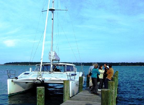 Stirling House Bed and Breakfast : The Catamaran