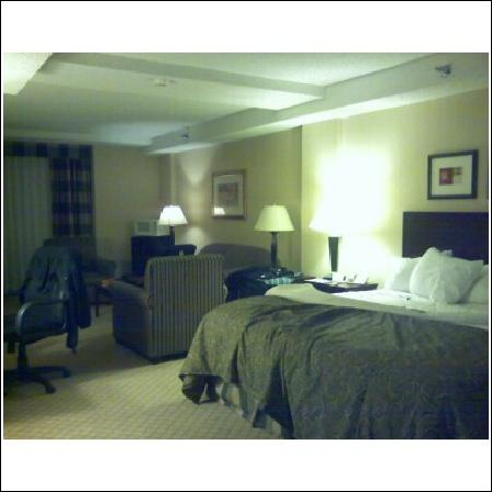 Holiday Inn Beaumont Plaza: The bed area
