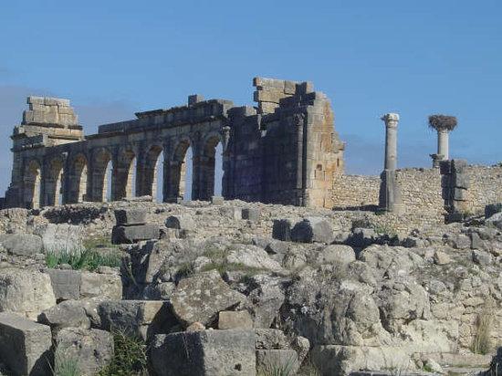 Meknes-Tafilalet Region, Maroko: site de volubilis