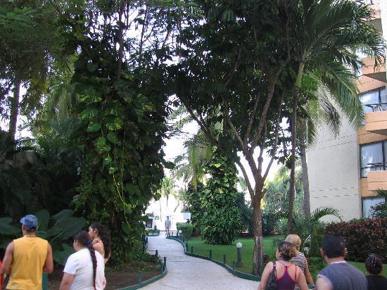 Hotel Fontan Ixtapa: le chemin vers la plage et les piscines