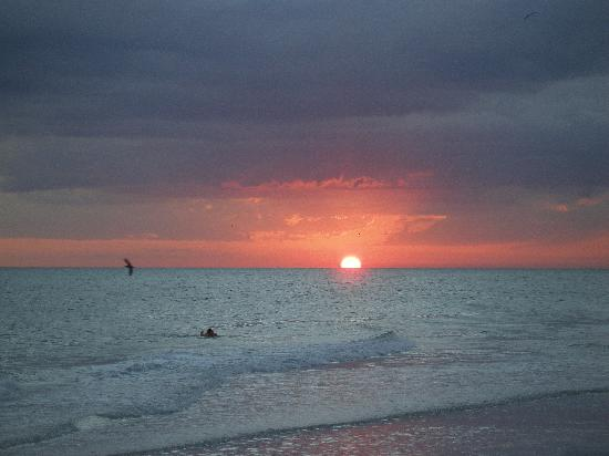 Anna Maria Island Fl Sunset Nr The Sandbar