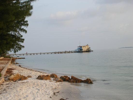 Isla Anna Maria, FL: Rod n Reel Pier