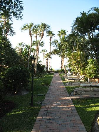 Sandpiper Inn: Path outside the rooms to the beach