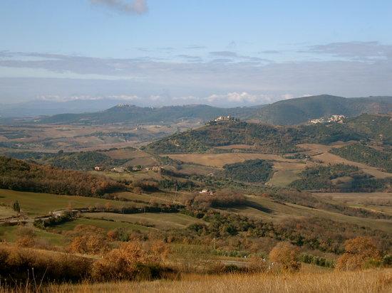 Montalcino, Italy: Tuscan scene
