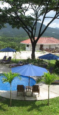 Lodge Las Ranas: Pool Area
