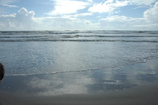 Port Aransas, TX: ocean view at Mustang Island