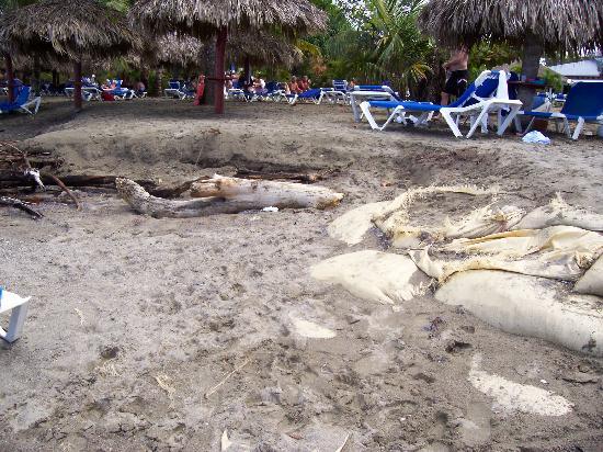 Grand Bahia Principe San Juan: voyez le piètre état de la plage, désolant
