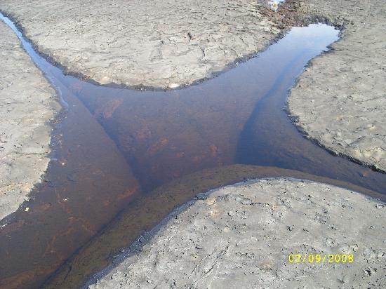 La Brea Pitch Lake: Mineral Waterhole in the Pitch Lake