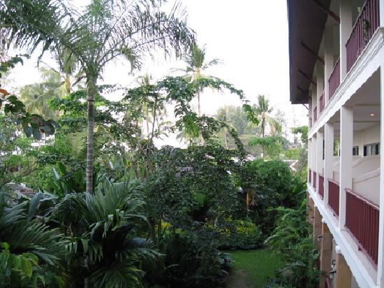 Nang Thong Bay Resort: Our not-so-sea view