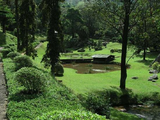 Amaya Hunas Falls Kandy: Golf course on the grounds