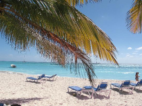 Memories Splash Punta Cana : saona