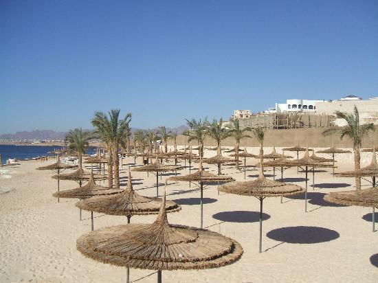 Reef Oasis Blue Bay Resort : spiaggia