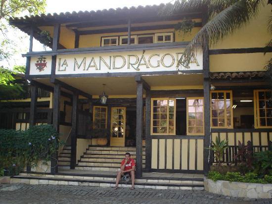 Hotel Mandragora: Frente de la posada, ya se aprecia su ambientación